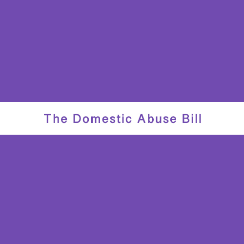 Fighting Back: MP Rosie Duffield gives powerful speech as she debates the new Domestic Abuse Bill in Parliament